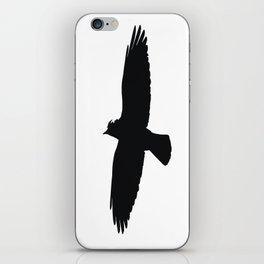 Jackdaw In Flight Silhouette iPhone Skin