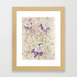 beauTEAful blooms: Columbines Framed Art Print