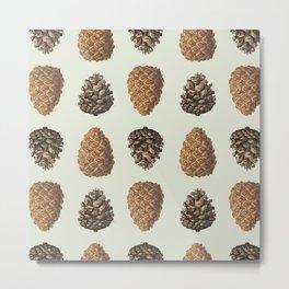Pinecones! Metal Print
