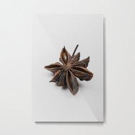 star anise - spice Metal Print