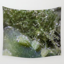 Shaun the sheep nudibranch herd Wall Tapestry