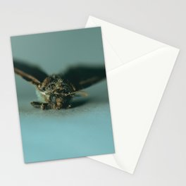 Moth in Blue Dawn Stationery Cards