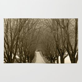 Tree Lined Road Rug