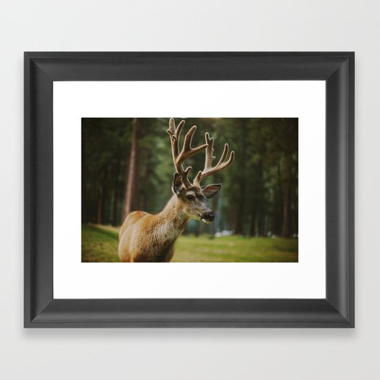 Joseph Framed Art Print