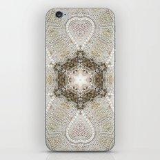 Vizcaya iPhone & iPod Skin