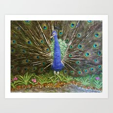 The Peacock The Land Of The Peacocks Art Print