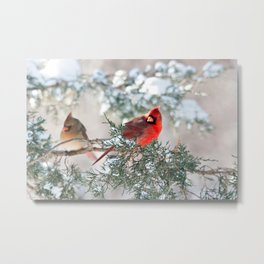 Remembering.... (Northern Cardinals) Metal Print