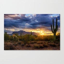 A Sonoran Desert Sunrise Canvas Print
