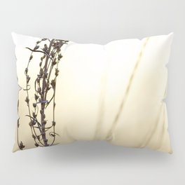 Golden Oats Pillow Sham