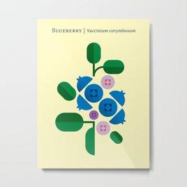Fruit: Blueberry Metal Print