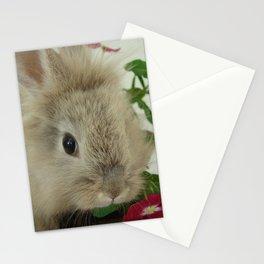 Lionhead Bunny Stationery Cards