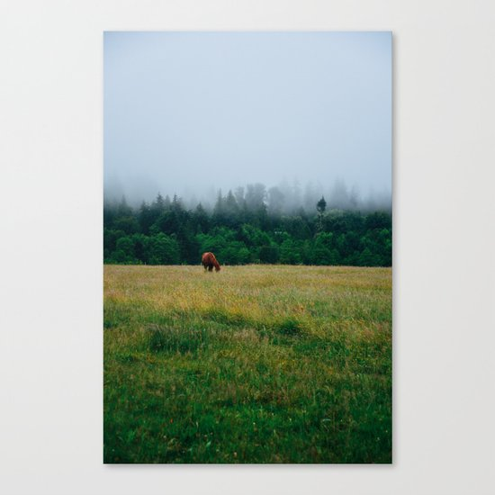 Morning Graze Canvas Print