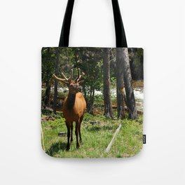Rocky Mountain Wapiti Tote Bag