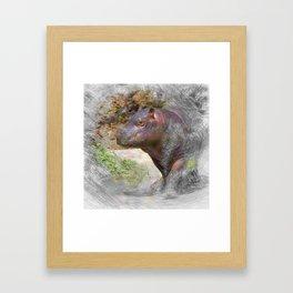 Artistic Animal Hippo Baby Framed Art Print