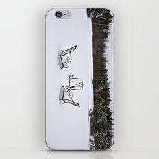 Snowy Meeting iPhone & iPod Skin