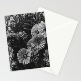 FLOWERS - FLORAL - BLACK AND WHITE Stationery Cards