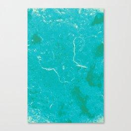 1005 Canvas Print