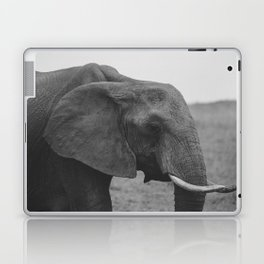 Elle II. Laptop & iPad Skin