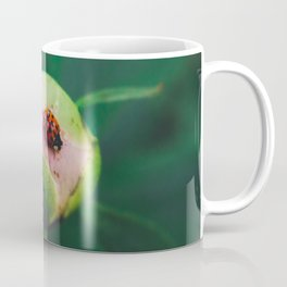 The Ladybug and the Peony Coffee Mug