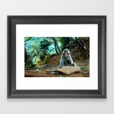 Saruyama Monkey at Lunch, Kyoto Framed Art Print