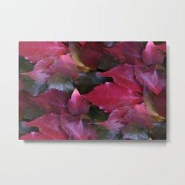 fall is coming -15- Metal Print