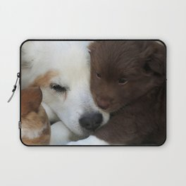 IcelandicSheepdog_20171203_by_JAMFoto Laptop Sleeve