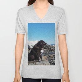 Coastal Dog on the Rocks Unisex V-Neck