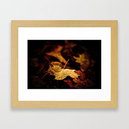 Autumn rain Framed Art Print