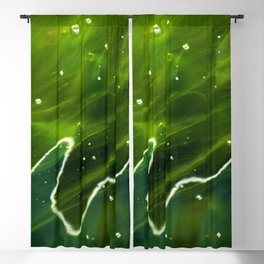 Green Algae and Water Blackout Curtain