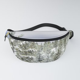 Winter Fanny Pack