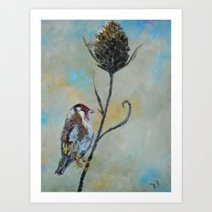 Goldfinch on Thistle Art Print