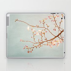 Painted Sky Laptop & iPad Skin