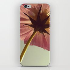 FLOWER 008 iPhone & iPod Skin