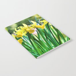 Daffodils for the Love of Spring! Notebook
