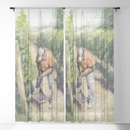 Vineyard Watercolor Landscape Wine Grapes Nature Sheer Curtain