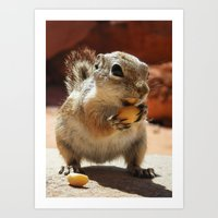 Chipmunk in Valley of Fire Art Print