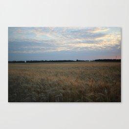Nr Corn Canvas Print
