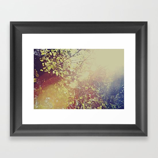 Afternoon Leaves Framed Art Print