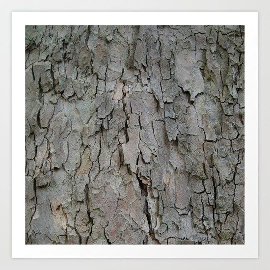 structures . bark Art Print