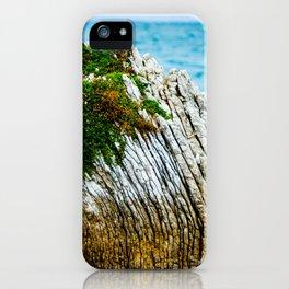 Kaikoura Coastline iPhone Case
