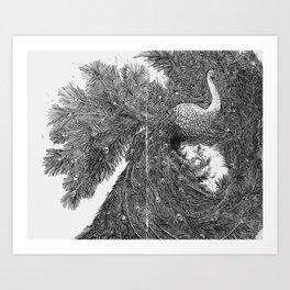 Peacock I Art Print