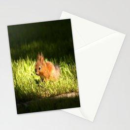 Cute Squirrel Cub #decor #society6 Stationery Cards