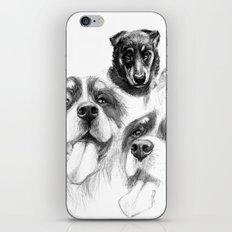 Dogs  sk128 iPhone & iPod Skin