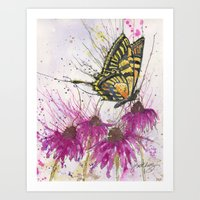 Swallowtail and Echinacea Art Print