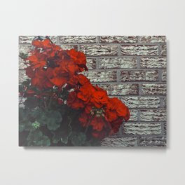 Red bricks red flowers Metal Print