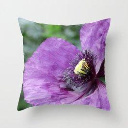 Purple Poppy / Violet Throw Pillow