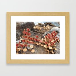 Paper sculpture by the sea Framed Art Print