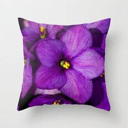 Saintpaulia 8624 Throw Pillow