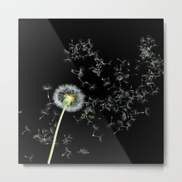 Blowing in the Wind Dandelion, Scanography Metal Print