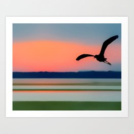 Seagull Sunset Abstract Art Print